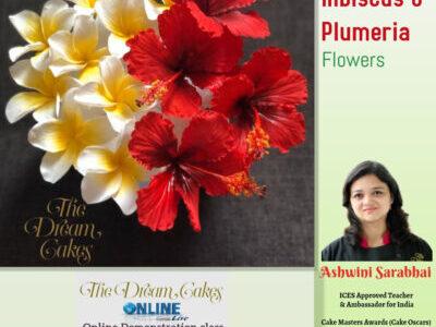 Sugar Hibiscus & Plumeria