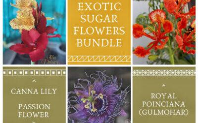 Exotic Sugar Flowers Bundle